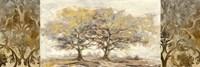 Golden Trees Fine Art Print