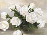 Vaso di Rose Fine Art Print