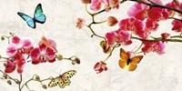 Orchids & Butterflies Fine Art Print