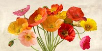 Poppies in Spring Fine Art Print