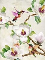 Magnolia and Humming Birds Fine Art Print
