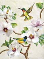 Magnolia and Birds Fine Art Print