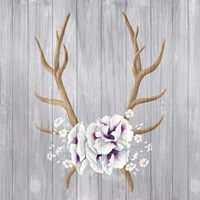 Antlers and Poppies I Sq Fine Art Print