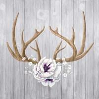 Antlers and Poppies II Sq Fine Art Print