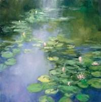 Blue Lily II Fine Art Print