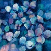 Midnight Blue Hydrangeas Fine Art Print