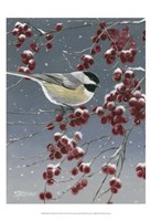 Winter Chickadees I Fine Art Print