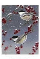 Winter Chickadees II Framed Print