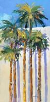 Shadow Palms I Framed Print