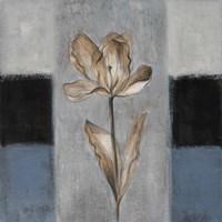 Tulips in Blue I Framed Print