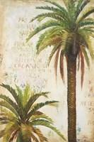Palms & Scrolls I Framed Print