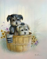 Brotherly Love Fine Art Print