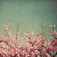 Springtime I Framed Print