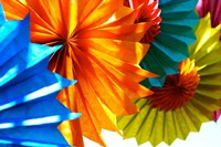 Paper Flowers Fine Art Print