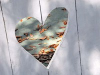Heart Full of Love Fine Art Print
