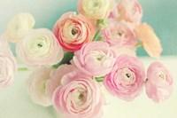 Blushing Blossoms Fine Art Print