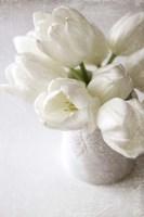 Vanishing in the White Elegance Fine Art Print