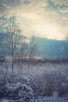 A Winter's Day Fine Art Print