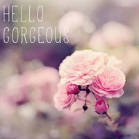 Hello Gorgeous Fine Art Print