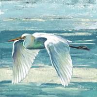 Great Egret II Fine Art Print