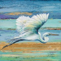 Great Egret I Fine Art Print