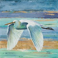 Great Egret II Fine Art Print