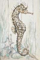 Antique Sea Horse I Framed Print