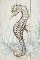 Antique Sea Horse II Framed Print