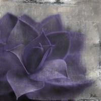 Lavender Succulent II Framed Print