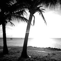 BW Bimini Sunset II Framed Print