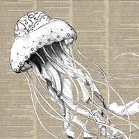 Underwater Newsprint Creatures I Fine Art Print