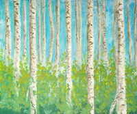 Vibrant Birchwood Fine Art Print