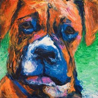 Puppy Dog Eyes II Fine Art Print