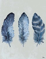 Indigo Blue Feathers I Fine Art Print