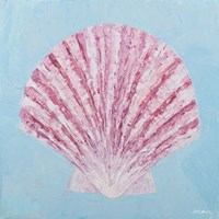 Conch & Scallop II Fine Art Print