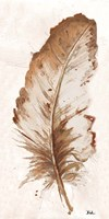 Brown Watercolor Feather II Framed Print