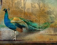 Feathered Dreams I Fine Art Print