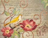 Avian Postcard II Framed Print
