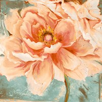 Beautiful Peonies Square I Fine Art Print