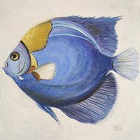 Little Fish III Fine Art Print