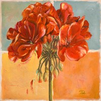 Red Geraniums I Fine Art Print