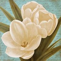 Blue Morning Tulips I Fine Art Print