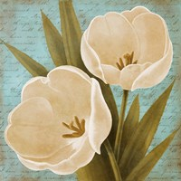 Blue Morning Tulips II Framed Print