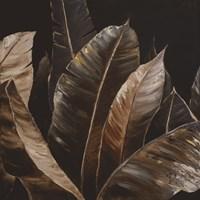 Through the Sepia Leaves I Framed Print