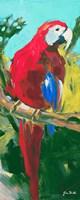 Tropic Parrots II Framed Print