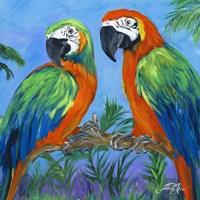 Island Birds Square I Framed Print