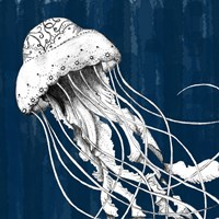 Underwater Creatures I Fine Art Print