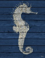 Antique Seahorse on Blue I Framed Print