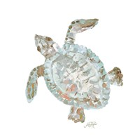 Neutral Turtle II Fine Art Print