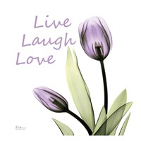 Purple Tulips Live Laugh Love Fine Art Print
